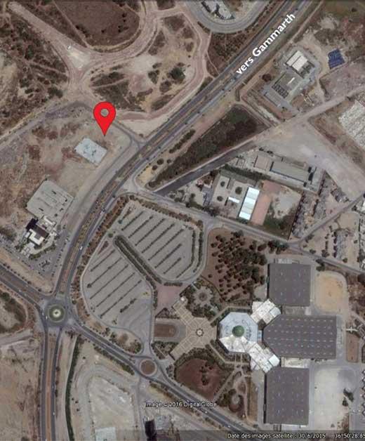 المقسم الياسمين - حدائق قرطاج