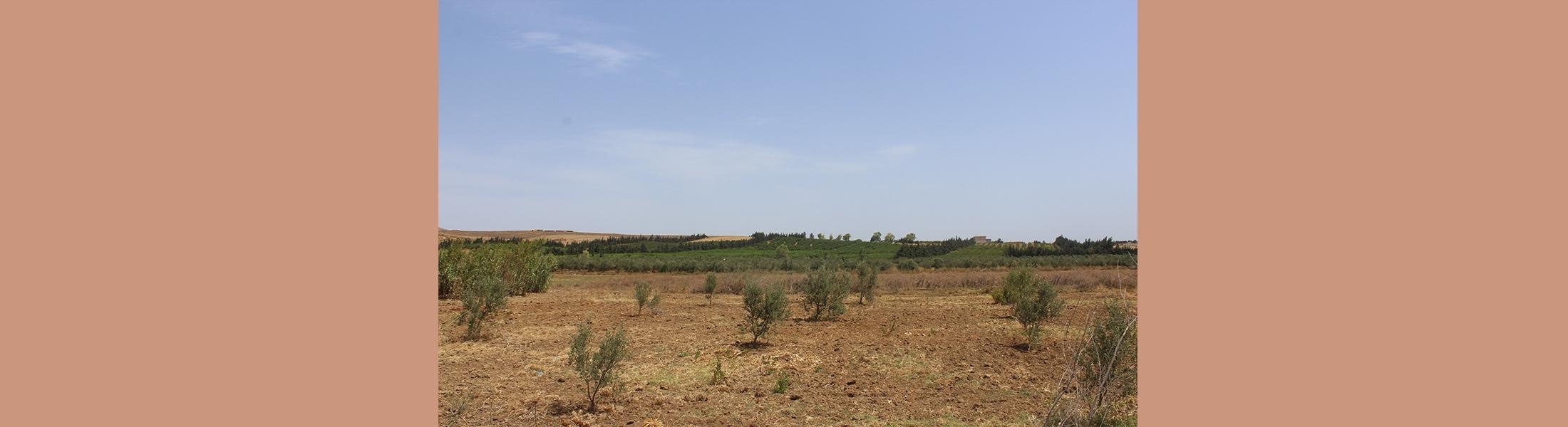 Terrain Essania Utique - Bizerte