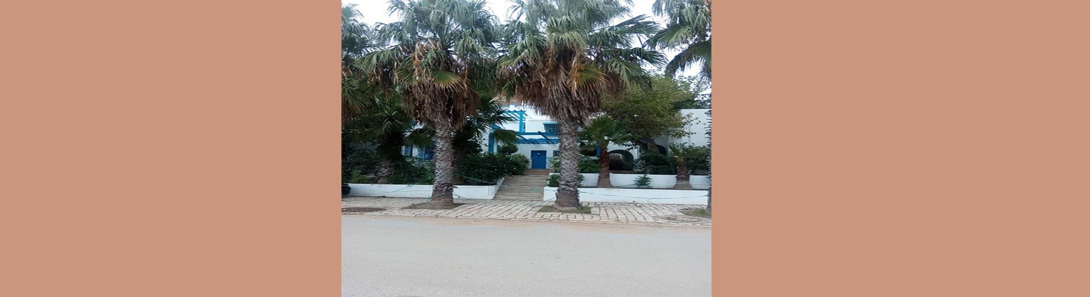 Villa Sidi Bou Saïd 3